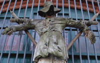 A scarecrow as art, spotted and shot in Hamburg, Germany, in 2008 by Jim McPhersonferson