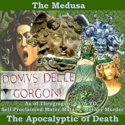 Collage featuring various shots of Medusa, prepared by Jim McPherson, 2008