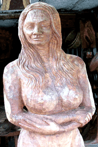Large carving spotted and shot in Puerto Morelos in 2014 by Jim McPherson